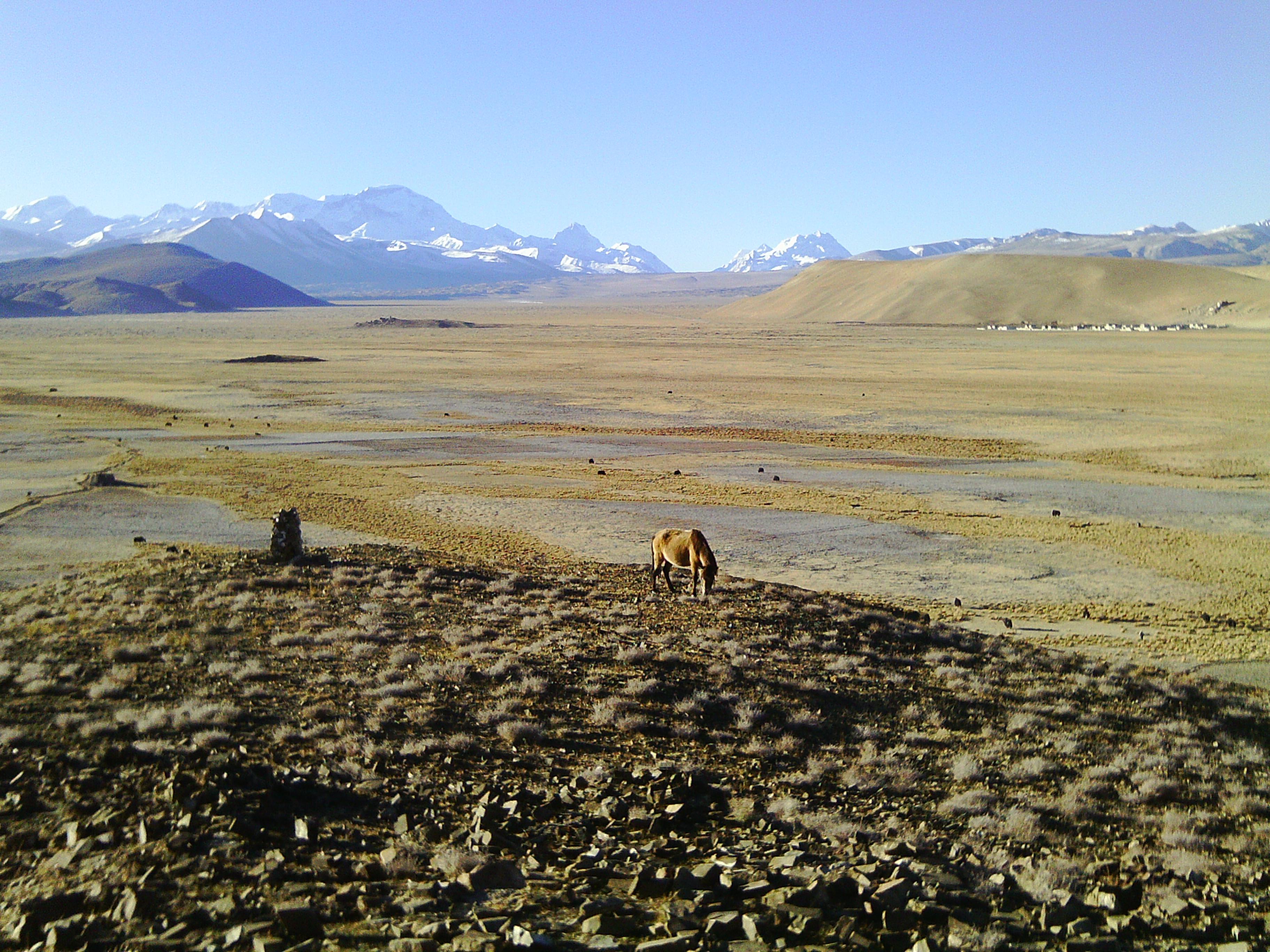 Tibet_a_walk_into_no_where